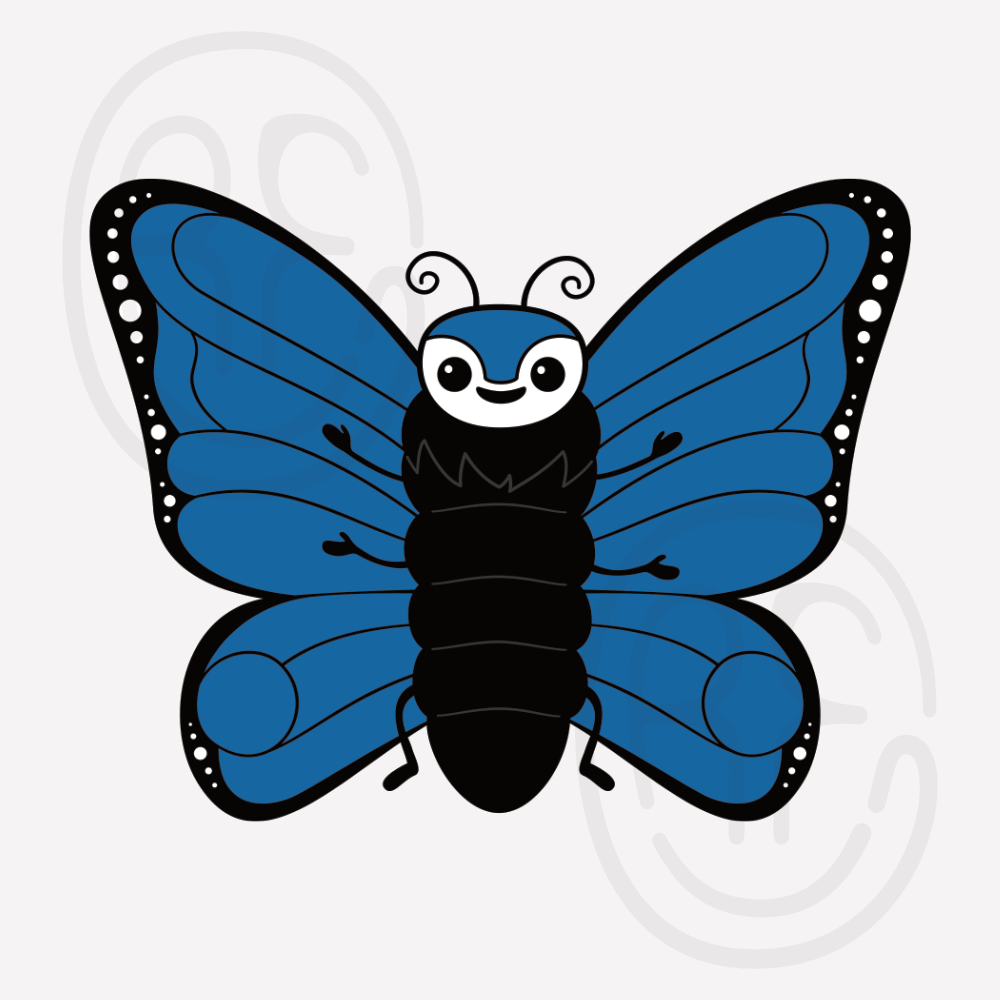 Featured image for the insect collection